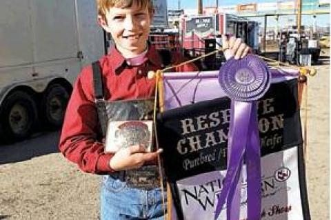 CONWAY EARNS AWARDS AT STOCK SHOW