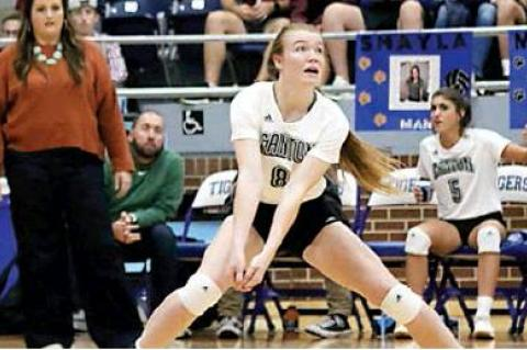 Eaglettes fall short in Area round