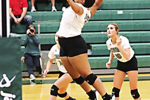 Eaglettes look to build momentum