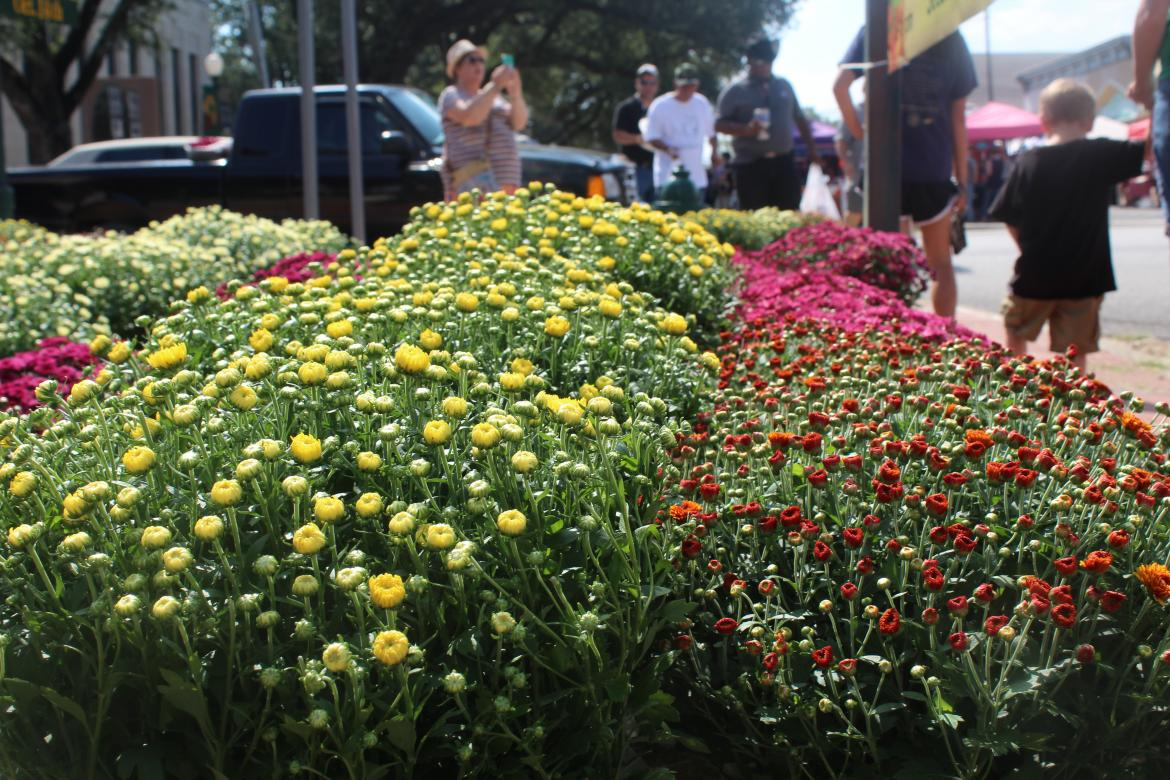 Canton's Autumn Festival to kick off weekend of events